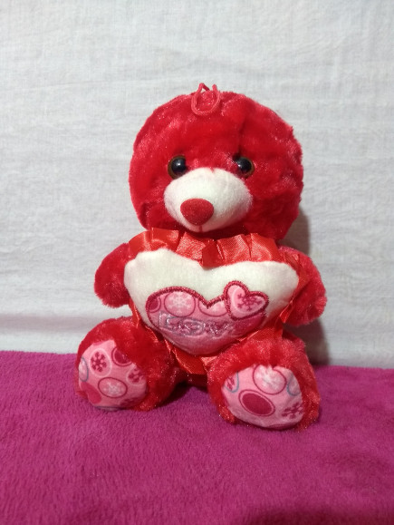 Red Small Teddy