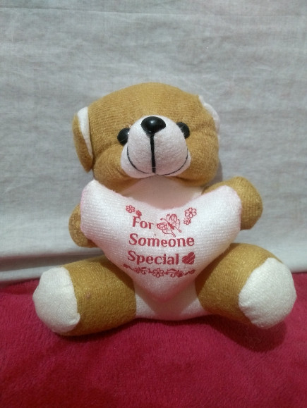 brown-small-stuffed-teddy-plush soft-toy
