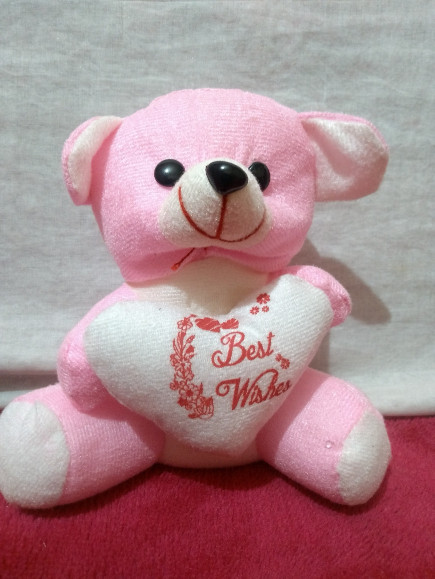 pink-best-wishes-heart-teddy