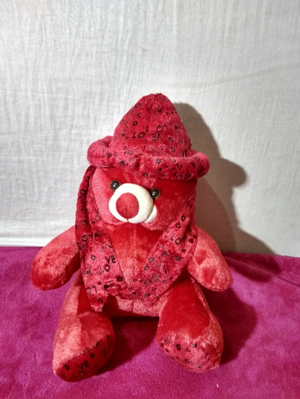 red-teddy-bear with cap