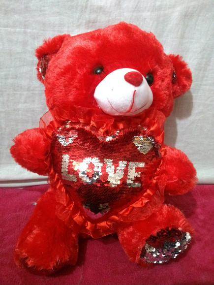 red-teddy-bear-with-magical-heart
