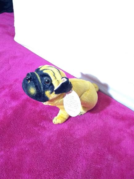 stuffed-dog-soft-toy-small
