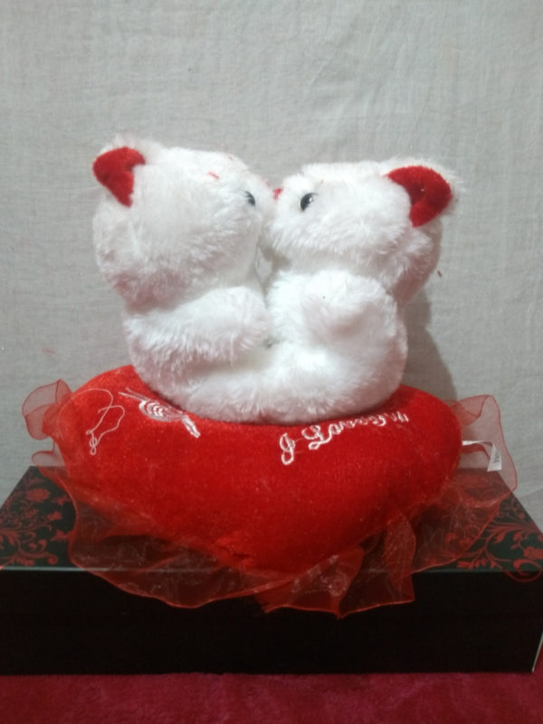 cute-kissing teddy-bear-white
